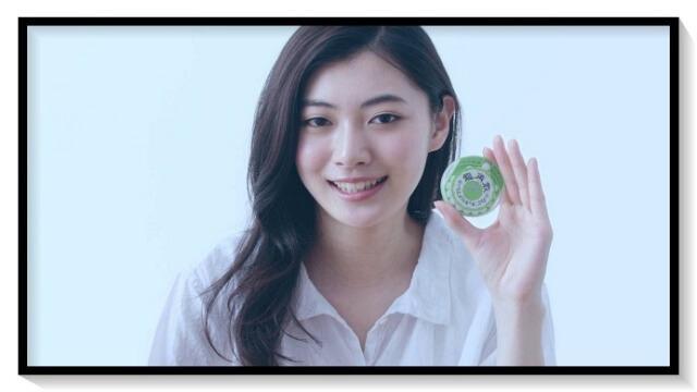 安田聖愛,モデル,女優,タレント